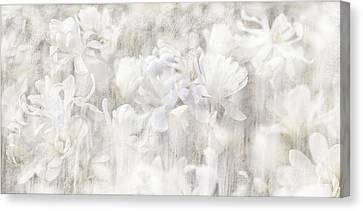 Sincere Apology Of The Whispering Magnolia Canvas Print
