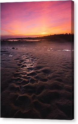 Singing Sands Sunset Canvas Print by Cale Best