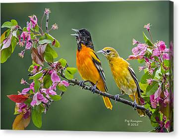 Singing To The Mrs. Canvas Print