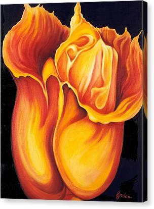 Singing Tulip Canvas Print by Jordana Sands
