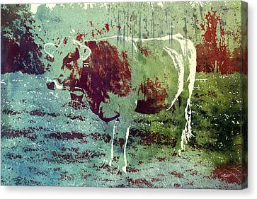 Single Cow Canvas Print by Jutta Maria Pusl