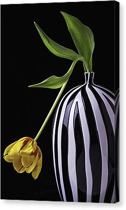 Bent Canvas Print - Single Tulip In Vase by Garry Gay