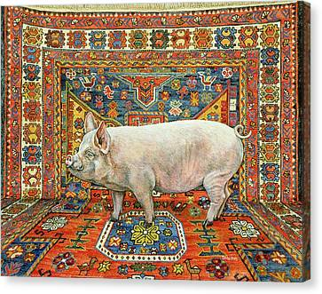 Singleton Carpet Pig Canvas Print by Ditz