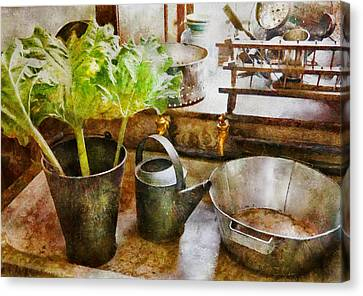 Sink - Eat Your Greens Canvas Print by Mike Savad