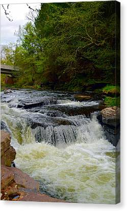 Billie Creek Canvas Print - Sinkhole To The Unknown by Billie Steer