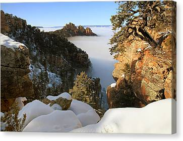 Inversion Canvas Print - Sinking Ship Inversion by Mike Buchheit