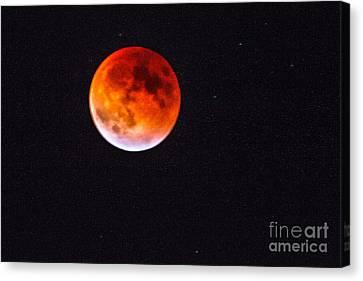 Super Moon Eclipse 2 Canvas Print by Robert Bales