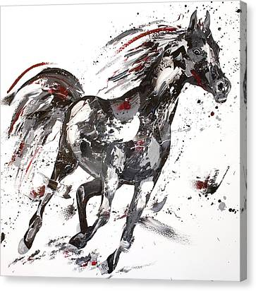 Jumping Horse Canvas Print - Siren by Penny Warden