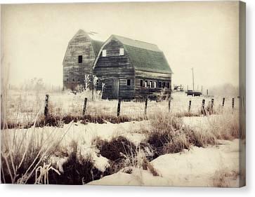 Sister Barns Canvas Print by Julie Hamilton