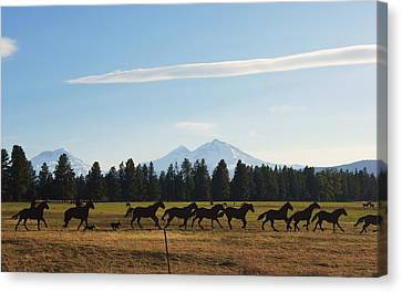 Sisters Oregon Canvas Print by Angi Parks