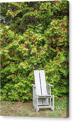 Sit For A Spell Canvas Print by A New Focus Photography