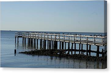 Sittin' On The Dock By The Bay Canvas Print
