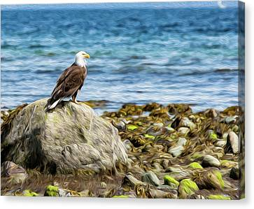 Sitting Bald Eagle Digital Oil Canvas Print
