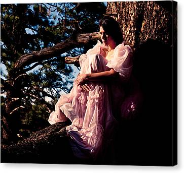 Sitting In A Tree Canvas Print by Scott Sawyer
