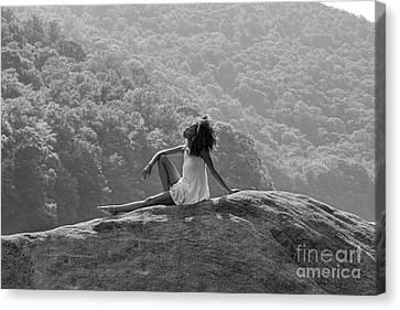 Sitting On The Rock Canvas Print by Dan Friend