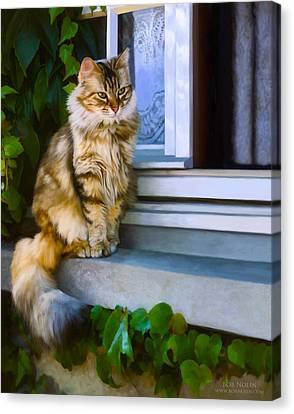 Sitting Pretty Canvas Print by Bob Nolin