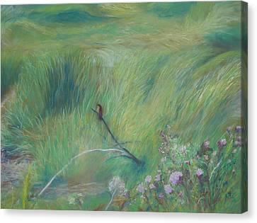 Sitting Pretty Canvas Print by Jackie Bush-Turner