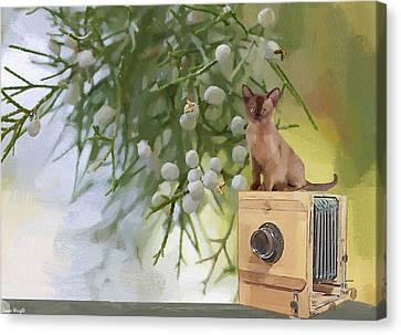 Aperture Canvas Print - Sitting Pretty by L Wright