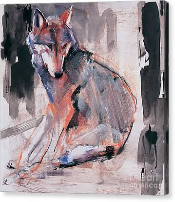 Wolves Canvas Print - Sitting Wolf by Mark Adlington