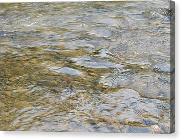 #sitwithnature Canvas Print by Becky Furgason