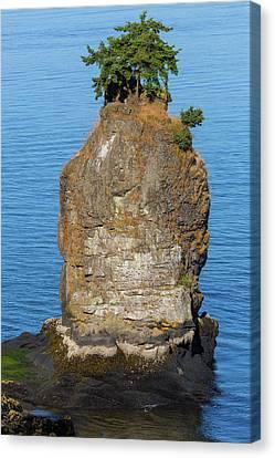 Siwash Rock By Stanley Park Canvas Print by David Gn