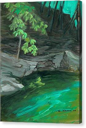 Six Mile Creek Ithaca New York Canvas Print by Ethel Vrana