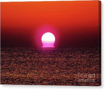 Canvas Print featuring the photograph Sizzling Sunrise by D Hackett