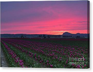 Canvas Print featuring the photograph Skagit Valley Burning Skies by Mike Reid