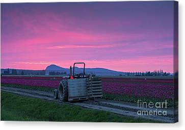 Skagit Valley Dusk Calm Canvas Print by Mike Reid