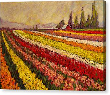Canvas Print featuring the painting Skagit Valley Tulip Field by Charles Munn