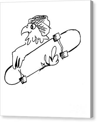 Skateboard Hawk  Canvas Print