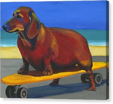 Skaterdog Canvas Print by Debbie Brown