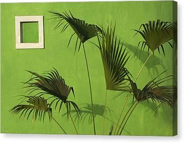 Skc 0683 Nature Outside Canvas Print