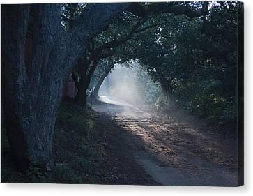 Skc 4671 Road Towards Light Canvas Print