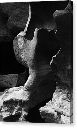 Forming Stones Canvas Print - Skc 8616 Nature's Sketched Rocks by Sunil Kapadia