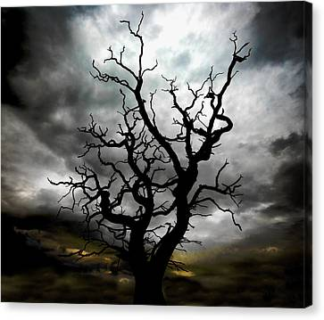 Skeletal Tree Canvas Print by Meirion Matthias