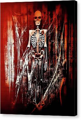 Bones Canvas Print - Skeleton by Tom Gowanlock