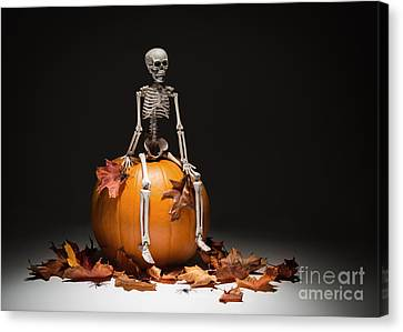 Skeleton With Pumpkin And Leaves Canvas Print by Amanda Elwell