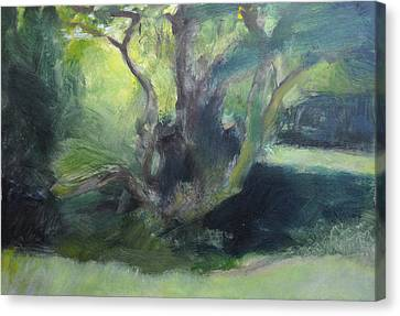 Canvas Print featuring the painting Sketch Of A Shady Glade. by Harry Robertson