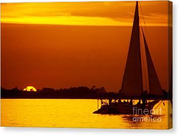 Skipjack Sunset Canvas Print by Thomas R Fletcher