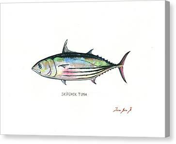 Skipjack Tuna Canvas Print