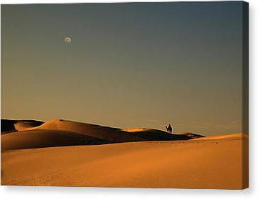 Skn 1117 Camel Ride At 6 Canvas Print