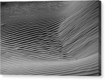 Skn 1132 Wind's Creation Canvas Print