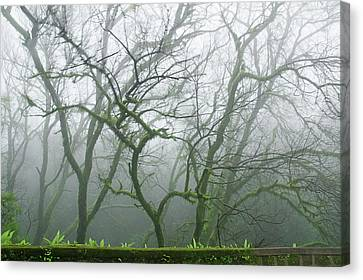 Skn 3720 Monsoon Landscape Canvas Print