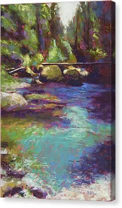 Skokomish River Canvas Print by Mary McInnis