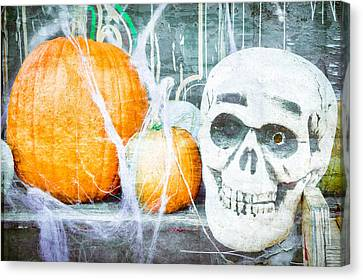 Skull And Pumpkin Canvas Print by Tom Gowanlock