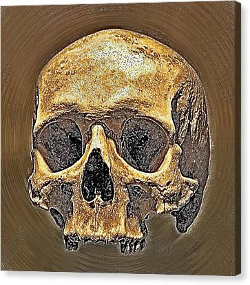 Skull. Canvas Print by Andy Za