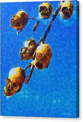 Skull Flower - Da Canvas Print by Leonardo Digenio