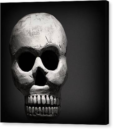 Skull Canvas Print by Joseph Skompski