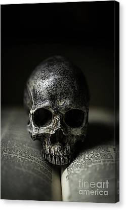 Skull On Book Canvas Print